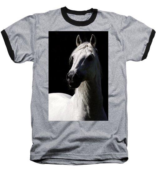 Proud Stallion Baseball T-Shirt
