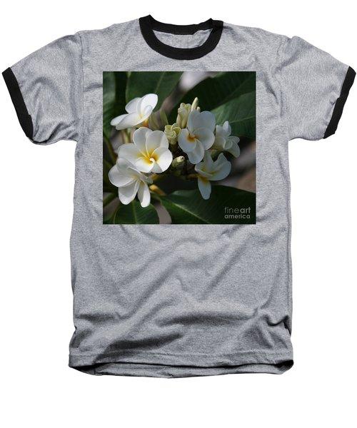 Pua Melia Na Puakea Onaona Tropical Plumeria Baseball T-Shirt