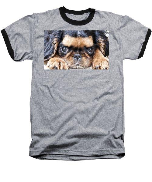 Puppy Love Baseball T-Shirt
