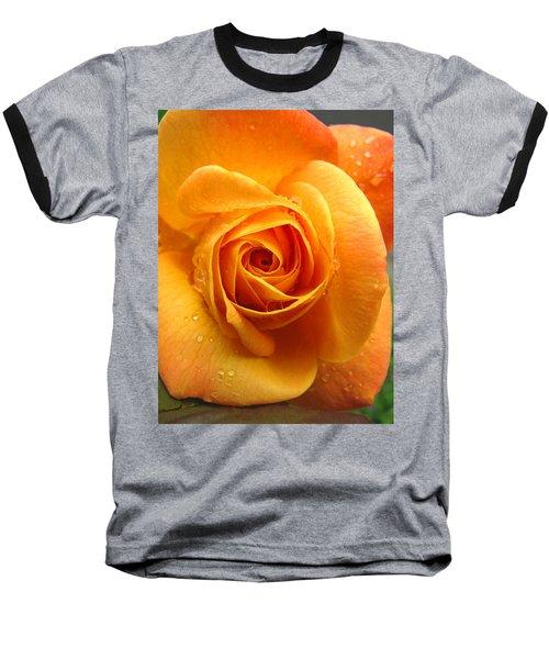 Baseball T-Shirt featuring the photograph Pure Gold - Roses From The Garden by Brooks Garten Hauschild