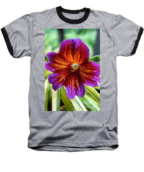 Purple And Orange Baseball T-Shirt by Jacqueline Athmann