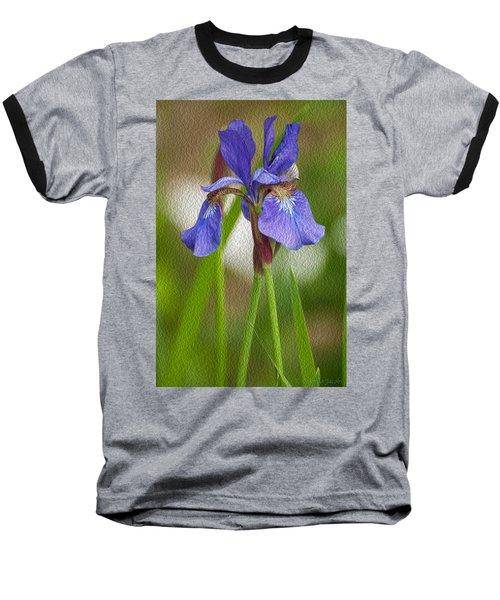 Purple Bearded Iris Oil Baseball T-Shirt by Brenda Jacobs