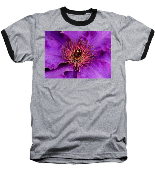 Baseball T-Shirt featuring the photograph Purple Clematis by Suzanne Stout