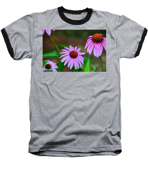Purple Coneflower - Echinacea Baseball T-Shirt