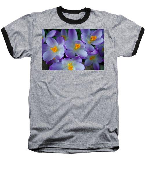 Purple Crocus Gems Baseball T-Shirt