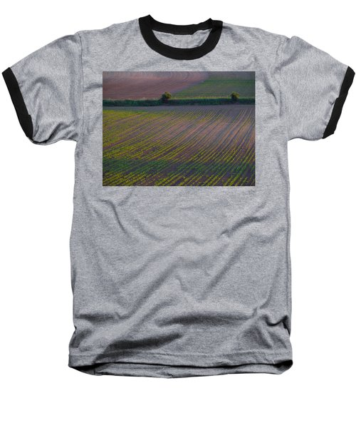 Baseball T-Shirt featuring the photograph Purple Fields by Evelyn Tambour
