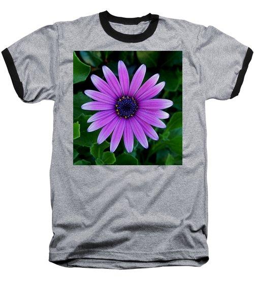 Purple Flower Baseball T-Shirt by Pamela Walton