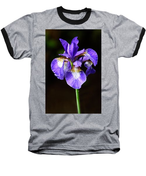 Purple Iris Baseball T-Shirt by Adam Romanowicz