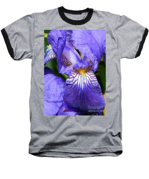 Purple Iris Baseball T-Shirt by Chalet Roome-Rigdon