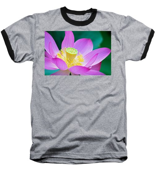 Purple Lotus Blossom Baseball T-Shirt by Michael Porchik