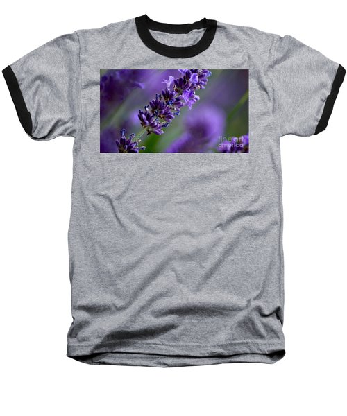 Purple Nature - Lavender Lavandula Baseball T-Shirt
