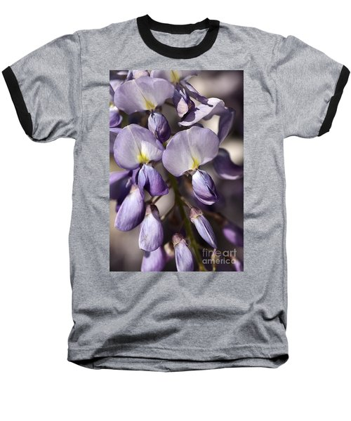 Baseball T-Shirt featuring the photograph Purple Of Wisteria by Joy Watson
