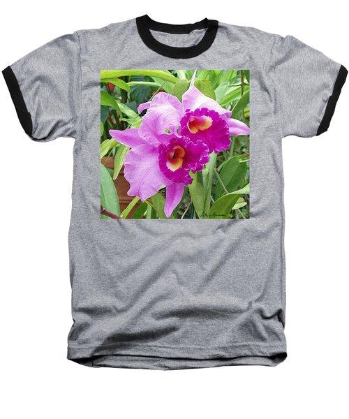 Purple Cattleya Orchids Baseball T-Shirt by Ellen Henneke