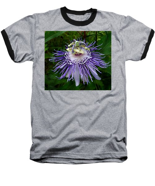 Purple Passionflower Baseball T-Shirt