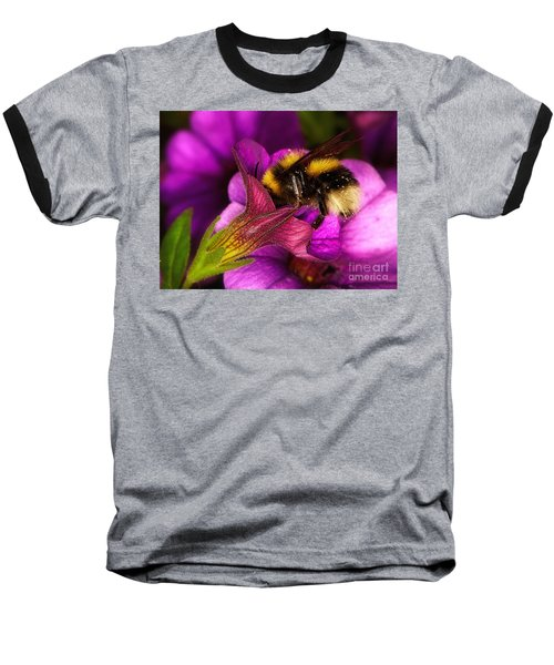 Purple Petunias With A Bumblebee Baseball T-Shirt