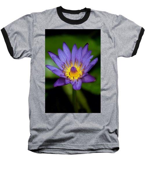 Purple Water Lily Baseball T-Shirt by Pamela Walton