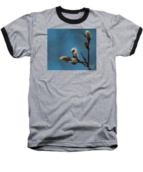 Pussy Willow... Baseball T-Shirt by Nina Stavlund