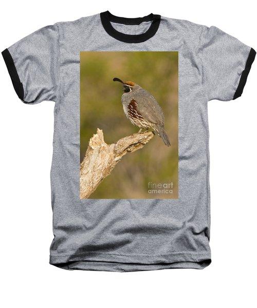 Baseball T-Shirt featuring the photograph Quail On A Stick by Bryan Keil