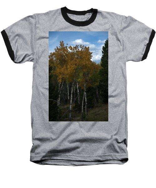 Quaking Aspen Baseball T-Shirt