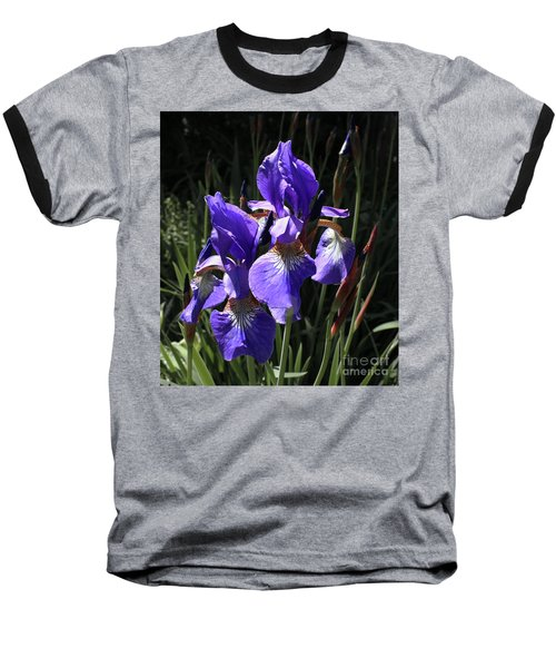 Quebec Provincial Flower Baseball T-Shirt by Barbara McMahon