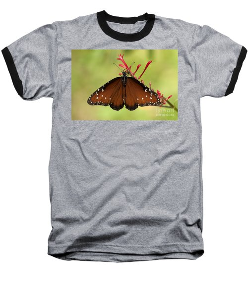 Queen Butterfly Baseball T-Shirt