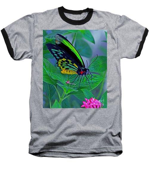 Rainbow Butterfly Baseball T-Shirt
