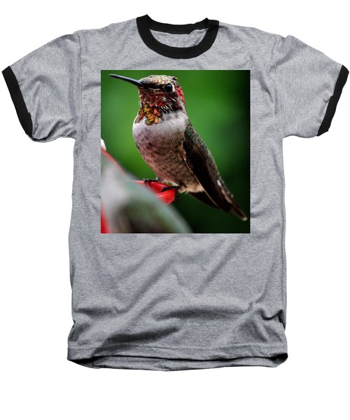 Baseball T-Shirt featuring the photograph Rainbow Colored Male Anna by Jay Milo