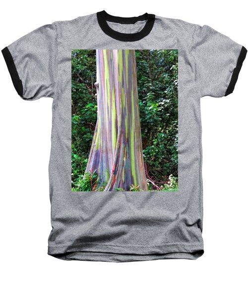 Rainbow Eucalyptus 3 Baseball T-Shirt by Dawn Eshelman