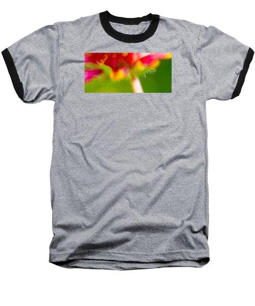 Rainbow Flower Baseball T-Shirt by Darryl Dalton