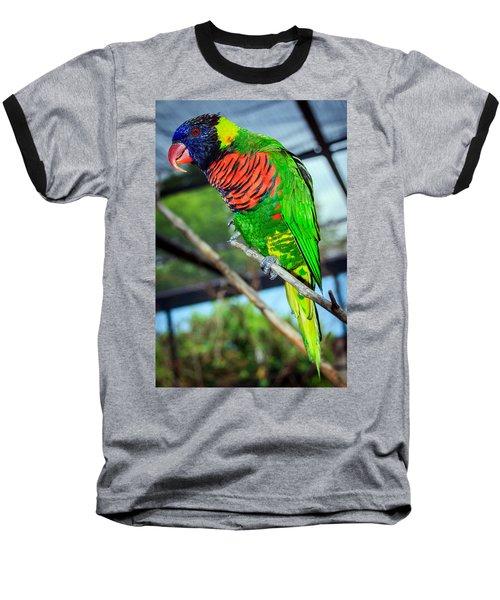 Baseball T-Shirt featuring the photograph Rainbow Lory by Sennie Pierson