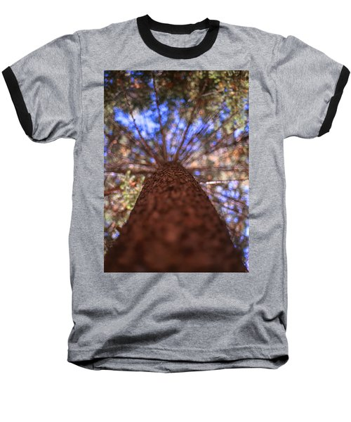 Baseball T-Shirt featuring the photograph Rainbow Pine by Aaron Aldrich