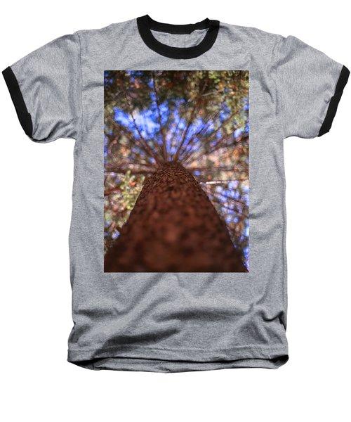 Rainbow Pine Baseball T-Shirt by Aaron Aldrich