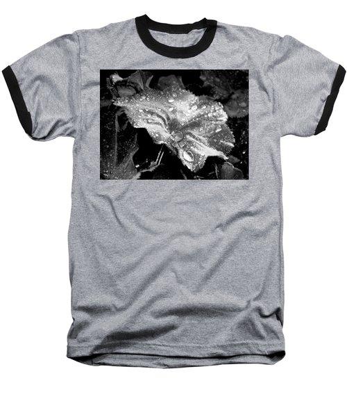 Raindrop Covered Leaf Baseball T-Shirt