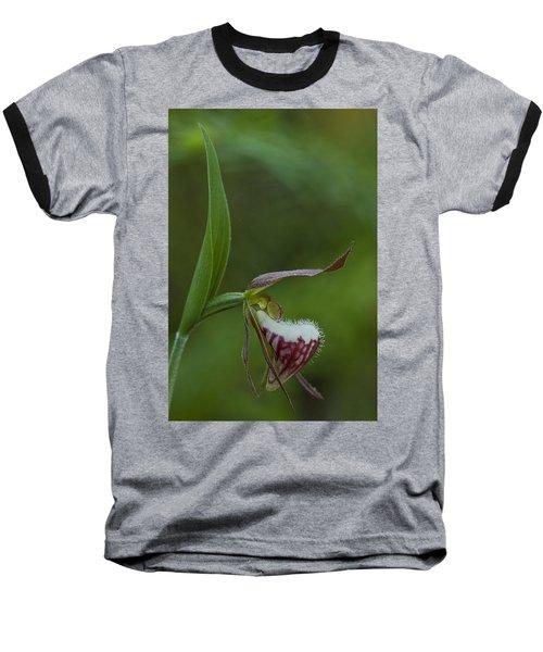 Ram's Head Lady-slipper Baseball T-Shirt