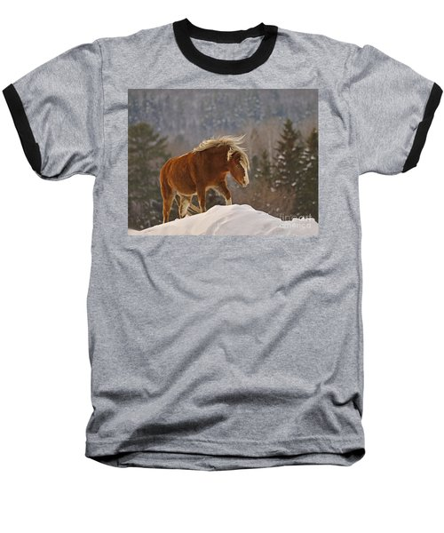 Rancher's Dream Baseball T-Shirt