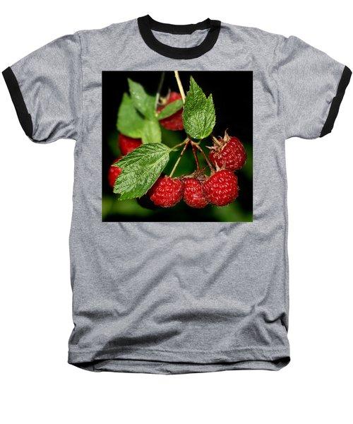 Raspberries Baseball T-Shirt by Nikolyn McDonald