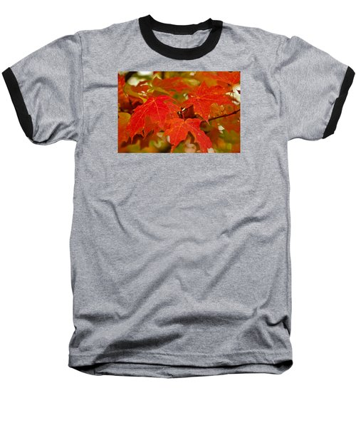 Ravishing Fall Baseball T-Shirt