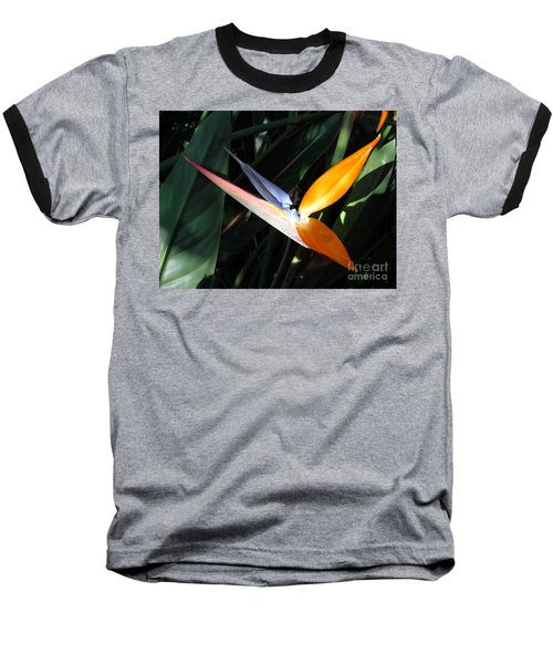 Baseball T-Shirt featuring the photograph Ray Of Light by David Lawson