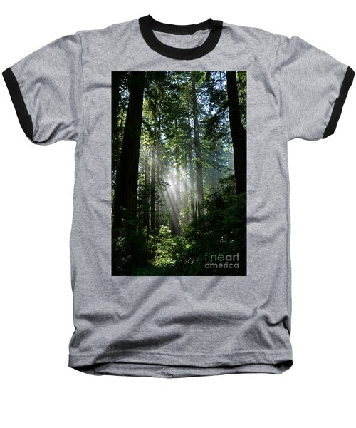 Rays In Redwoods Baseball T-Shirt