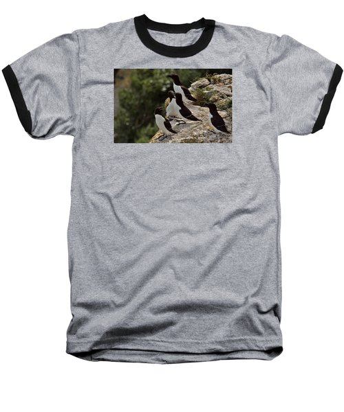 Razorbill Cliff Baseball T-Shirt by Dreamland Media