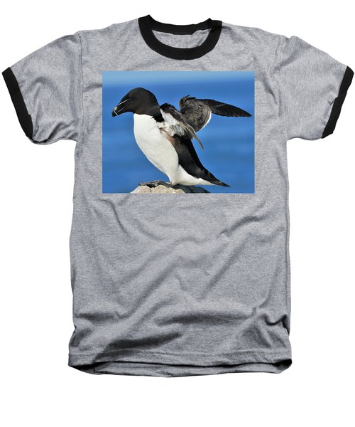 Razorbill Baseball T-Shirt by Tony Beck