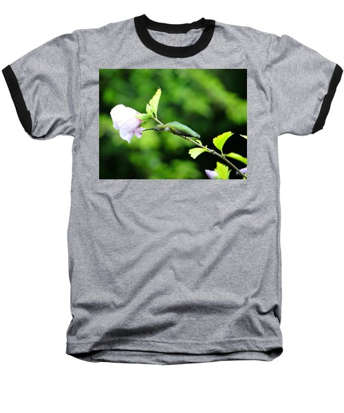 Reaching For Nectar Baseball T-Shirt