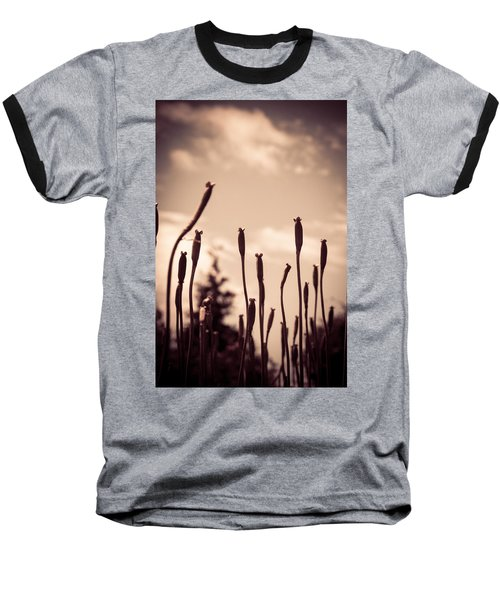 Flowers Reaching For The Sky Baseball T-Shirt by Brian Caldwell