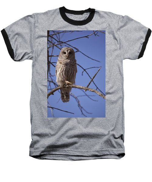Ready For Takeoff Baseball T-Shirt by Eunice Gibb