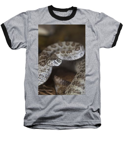 A Rattlesnake Thats Ready To Strike Baseball T-Shirt