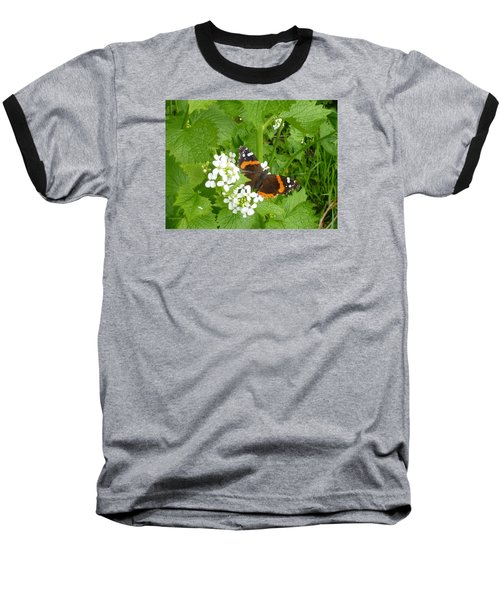 Baseball T-Shirt featuring the photograph Red Admiral Butterfly by Lingfai Leung