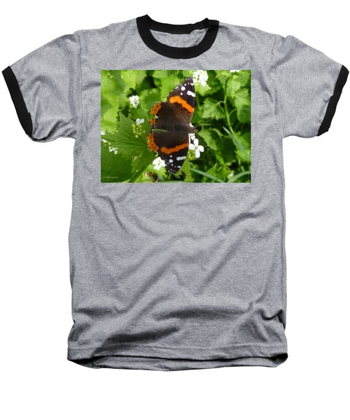 Baseball T-Shirt featuring the photograph Red Admiral In Toronto by Lingfai Leung