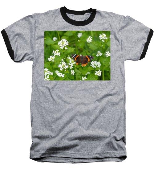 Baseball T-Shirt featuring the photograph Red Admirals by Lingfai Leung
