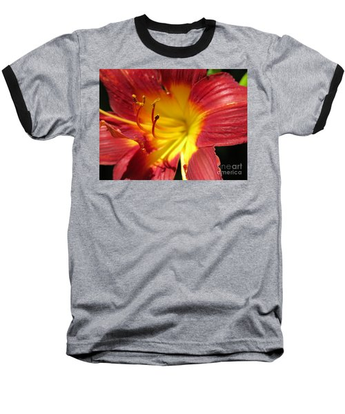 Red And Yellow Day Lily Baseball T-Shirt