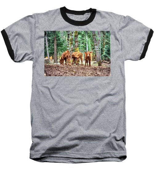 Red Angus Calves Baseball T-Shirt